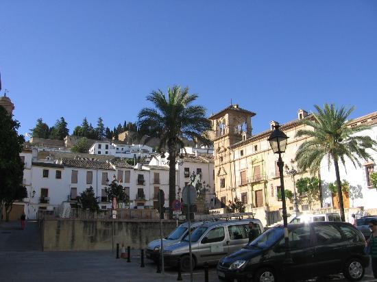 Hotel Coso Viejo: dalla camera