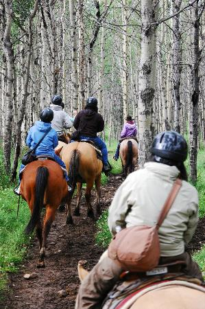 Jasper Riding Stables: 1 hour trail