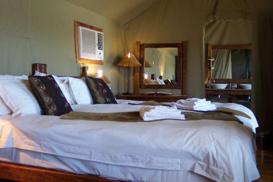 Buffelsdrift Game Lodge: under canvass luxury