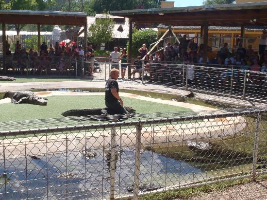 Reptile Gardens Picture Of Reptile Gardens Rapid City Tripadvisor