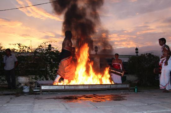 Kandyan Dance Performance: Walking on fire 2
