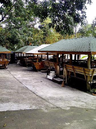 Bosay Resort: cottages