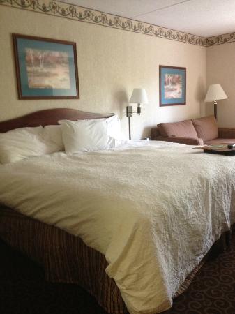 East Syracuse Inn: Room 216 bed