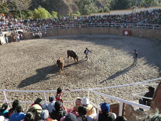 San Agustin Urubamba Hotel: Local bull fight