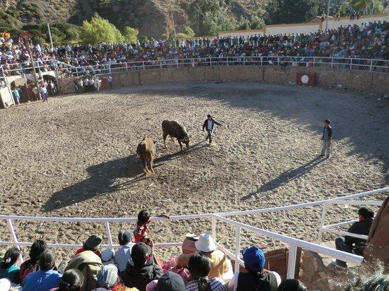 San Agustin Urubamba Hotel : Local bull fight