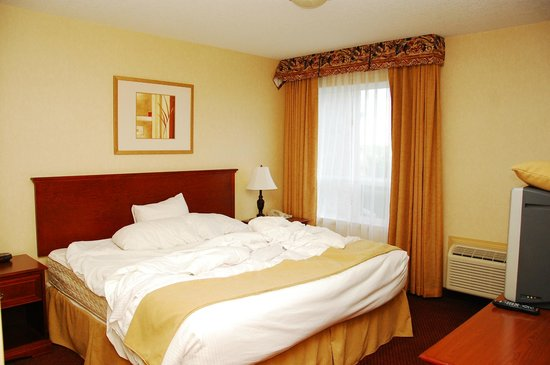 Ramada Edmonton International Airport: bedroom