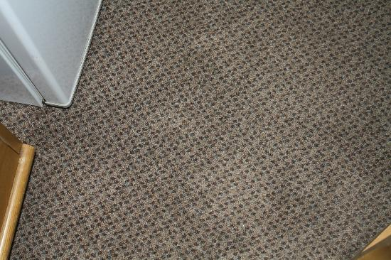 Days Inn Lincoln: carpet in room