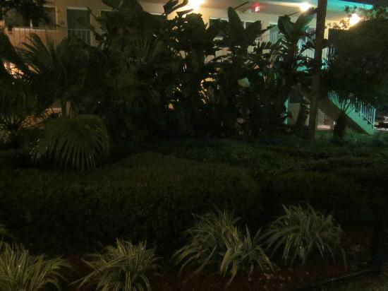 BEST WESTERN Port St. Lucie: Hotel Grounds~it was raining