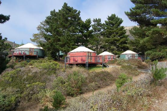 Treebones Resort: A horde of yurts