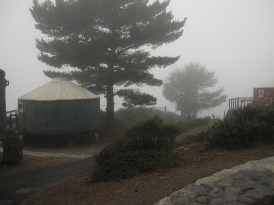 Treebones Resort: Yurt #9 in the fog
