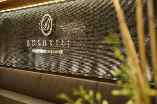 Bushkill Inn & Conference Center: Water Wall