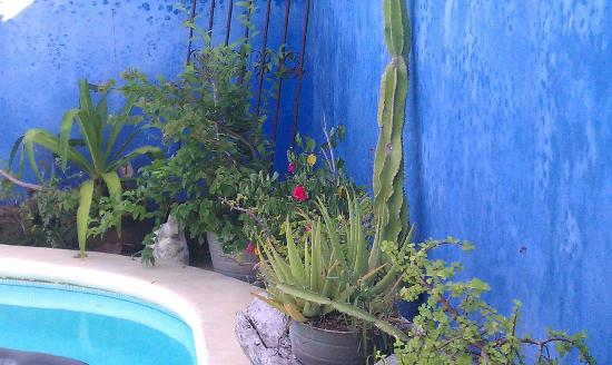 Lolo Lorena: The pool area