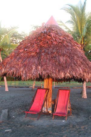 Iguana Lodge: Beach