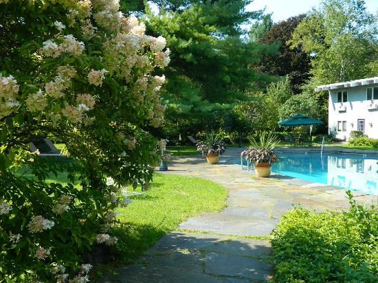 Paradise Inn: Lovely walk to the pool past blooming hydrangeas.