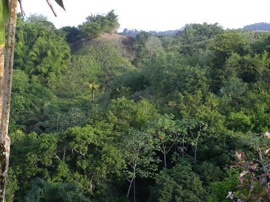 Top O' Tobago Villa & Cabanas: View from property