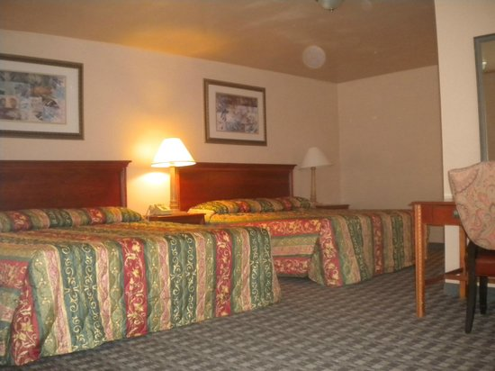 Payless Inn: hotel room