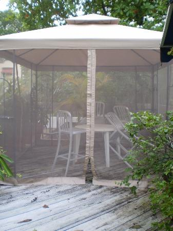 At Wind Chimes Boutique Hotel: extra netting with chairs and table on the pation