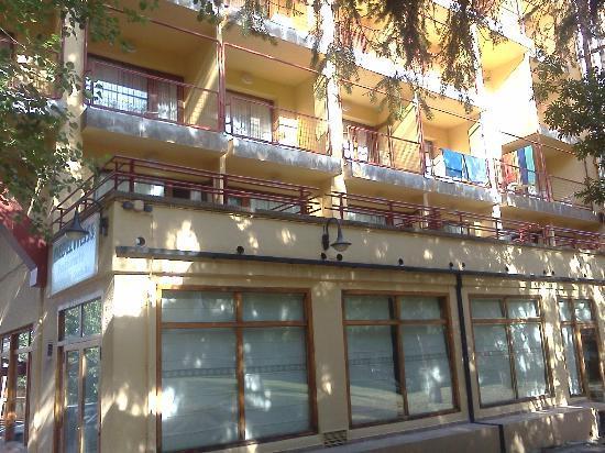 Hotel y Apartamentos Cerler Edelweiss : Vista desde jardín