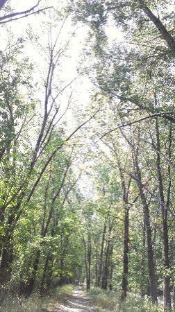 Parc Des Iles de Boucherville: Boucherville National Park
