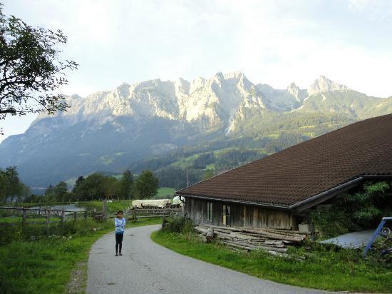 Bauernhof Rettenbachgut: view from the farm