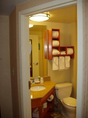 Hampton Inn by Hilton Harrisburg West: Bathroom