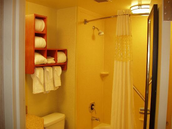 Hampton Inn by Hilton Harrisburg West : Bathroom