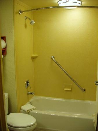 Hampton Inn by Hilton Harrisburg West: Shower