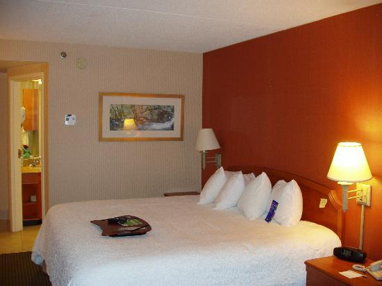 Hampton Inn by Hilton Harrisburg West: King bed