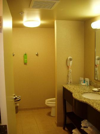 Hampton Inn Lewisburg: Bathroom