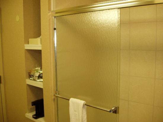 Hampton Inn Lewisburg: Shower