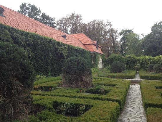Szidonia Manor House: one part of garden