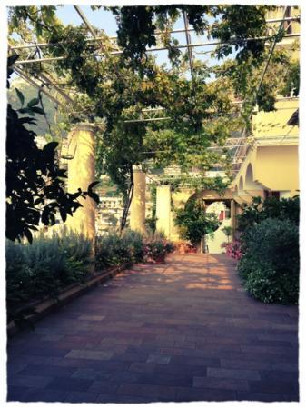 Hotel California: trädgården