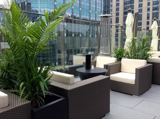 Sky terrace at ivy boutique hotel chicago streeterville for Boutique hotels chicago loop