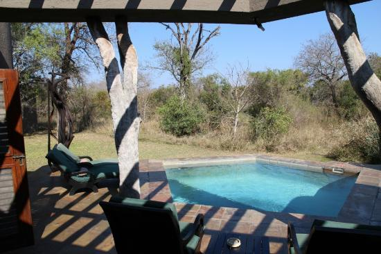 ‪‪Sabi Sabi Bush Lodge‬: Swimming pool of the suite
