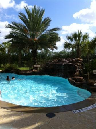Staybridge Suites Houston / NASA - Clear Lake: hotel pool