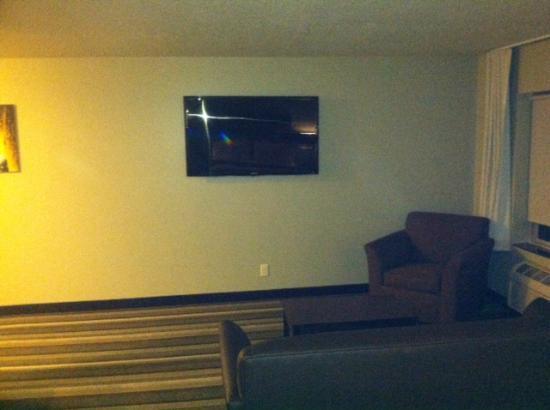 The East Avenue Inn & Suites: Huge LCD TV in living area
