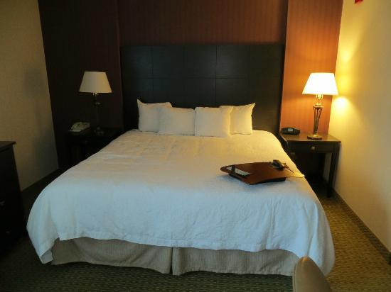 Hampton Inn & Suites Reagan National Airport: King bed room