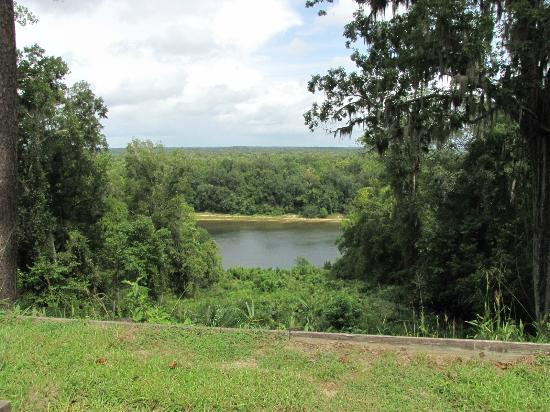 Torreya State Park: Overlook of Appalachacola River behind the Gregory House