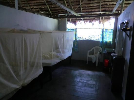 Amazon Explorama Lodges: Hotel room