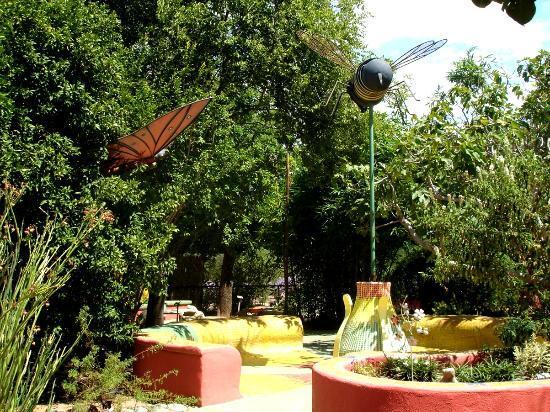Tucson Botanical Gardens: Butterfly garden