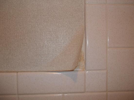 Royal Crest Motel Gaylord : Bathroom paper peeling.