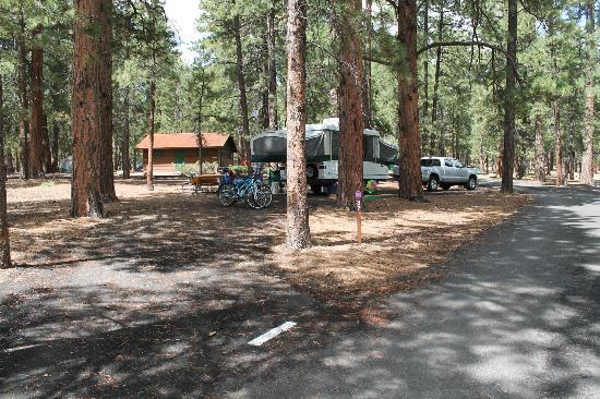 North Rim Campground: Site 37  from the road.