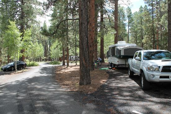 North Rim Campground: Site 37