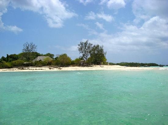 Paje Beach: Safari blu - Isola Kwale