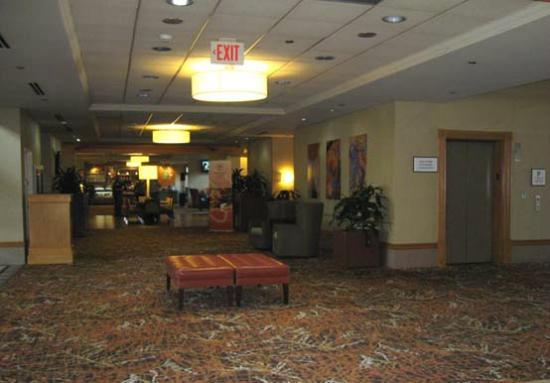 Sheraton Hartford Hotel at Bradley Airport: Lobby