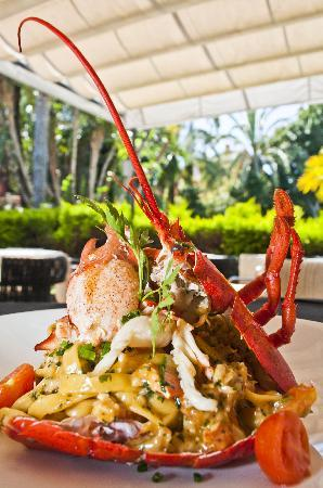 Restaurante Soliluna : Best Fetuccini Lobster in the world