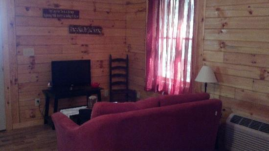 Blue Rose Cabins: the living area