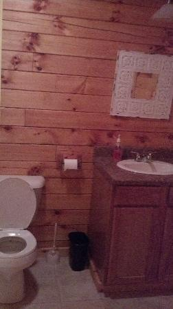 Blue Rose Cabins: part of the bathroom