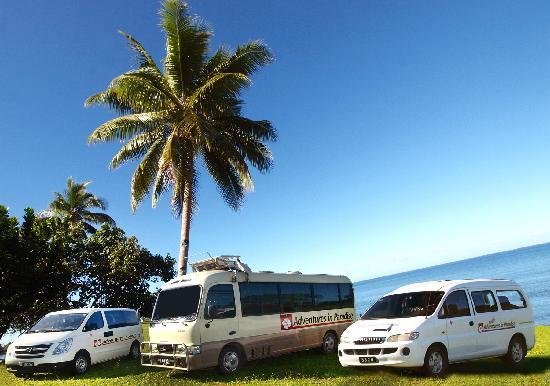 Adventures in Paradise : Clean and Professional Transfers