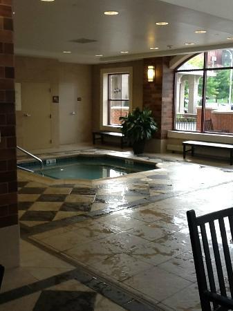 Hampton Inn & Suites Saratoga Springs Downtown: Hot tub